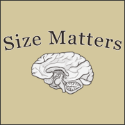 Size Matters funny brain t-shirt offensive